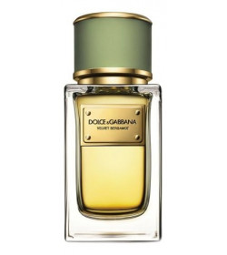 D&G VELVET BERGAMOT FOR MEN